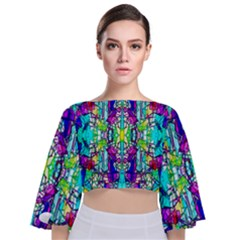 Colorful 60 Tie Back Butterfly Sleeve Chiffon Top