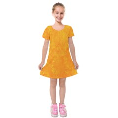 Sunshine Orange Kids  Short Sleeve Velvet Dress by retrotoomoderndesigns