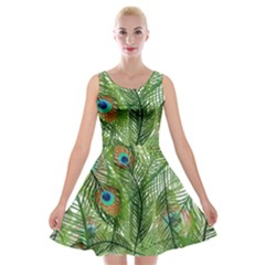Peacock Feathers Pattern Velvet Skater Dress
