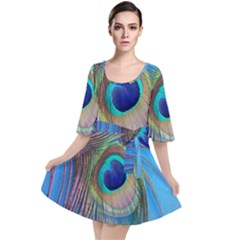 Nature Bird Wing Texture Animal Male Wildlife Decoration Pattern Line Green Color Blue Colorful Velour Kimono Dress