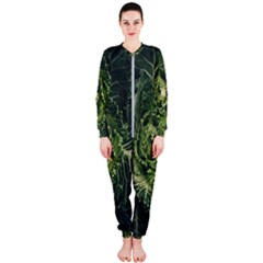 Plant Leaf Flower Green Produce Vegetable Botany Flora Cabbage Macro Photography Flowering Plant Onepiece Jumpsuit (ladies)