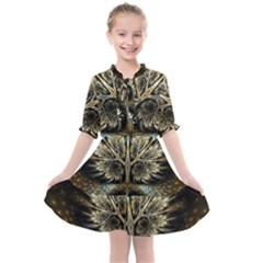 Roots Abstract Sectors Layers Colors Kids  All Frills Chiffon Dress