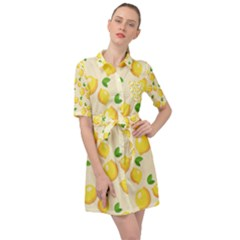 Fruits 1193727 960 720 Belted Shirt Dress by vintage2030