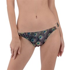 Bird 4099645 960 720 Ring Detail Bikini Bottom