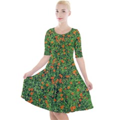 Carnations Flowers Seamless Quarter Sleeve A Line Dress
