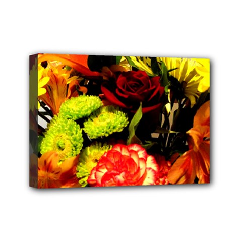 Flowers 1 1 Mini Canvas 7  X 5  (stretched) by bestdesignintheworld