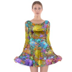 Apo Flower Power Long Sleeve Skater Dress by WolfepawFractals