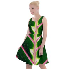 Exotic Green Leaf Knee Length Skater Dress