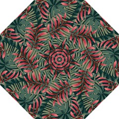 Trending Abstract Seamless Pattern With Colorful Tropical Leaves Plants Green Golf Umbrellas
