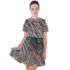 Peacock Feathers Pattern Colorful Short Sleeve Shoulder Cut Out Dress  by Vaneshart
