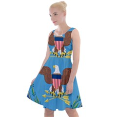 Seal Of United States Department Of Defense Knee Length Skater Dress