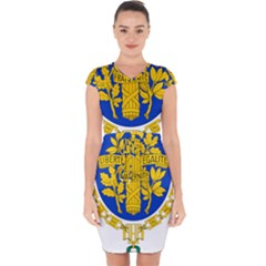 Coat O Arms Of The French Republic Capsleeve Drawstring Dress  by abbeyz71