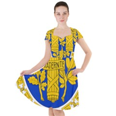 Coat O Arms Of The French Republic Cap Sleeve Midi Dress by abbeyz71