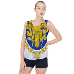 Coat O Arms Of The French Republic Bubble Hem Chiffon Tank Top by abbeyz71