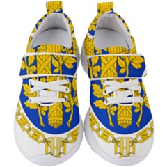 Coat Of Arms Of The French Republic Kids  Velcro Strap Shoes by abbeyz71