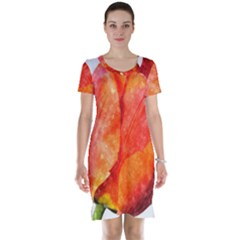 Spring Tulip Red Watercolor Aquarel Short Sleeve Nightdress by picsaspassion