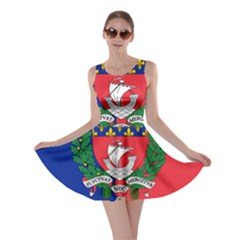 Flag Of Paris  Skater Dress by abbeyz71