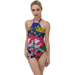 Flag of Paris  Go with the Flow One Piece Swimsuit