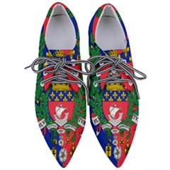 Flag of Paris  Women s Pointed Oxford Shoes