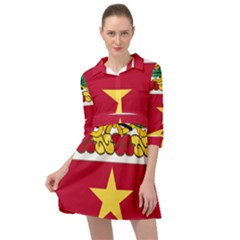 Coat Of Arms Of United States Army 136th Regiment Mini Skater Shirt Dress