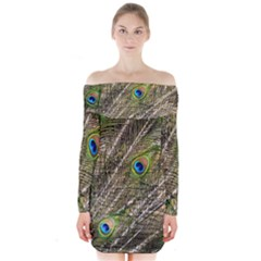 Peacock Feathers Color Plumage Green Long Sleeve Off Shoulder Dress by Sapixe