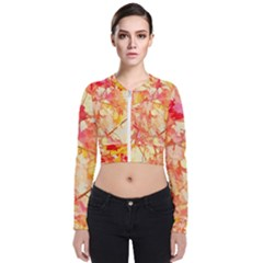 Monotype Art Pattern Leaves Colored Autumn Long Sleeve Zip Up Bomber Jacket