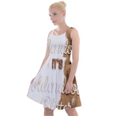 Golden Doodle Apparel Knee Length Skater Dress