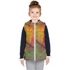 Fall Foliage Color Leaf Veins Kids  Hooded Puffer Vest by Wegoenart