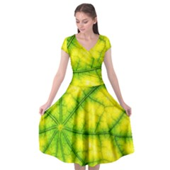 Photosynthesis Leaf Green Structure Cap Sleeve Wrap Front Dress