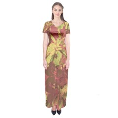 Tropical Vintage Floral Artwork Print Short Sleeve Maxi Dress by dflcprintsclothing
