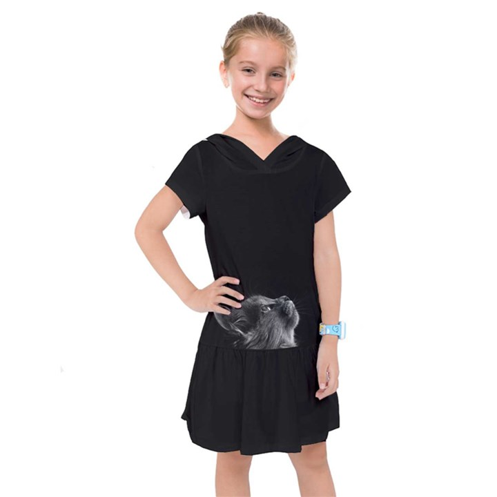 Who is there? Kids  Drop Waist Dress