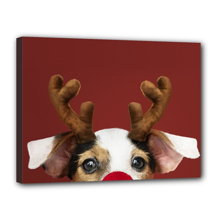 Christmass deer Canvas 16  x 12  (Stretched)