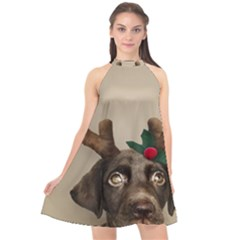 Christmas Dog Halter Neckline Chiffon Dress