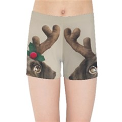 Christmas Dog Kids  Sports Shorts