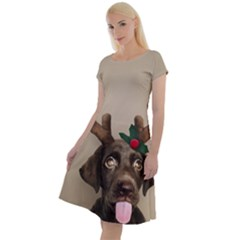 Christmas Dog Classic Short Sleeve Dress