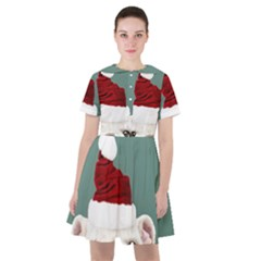 Santa Dog Sailor Dress