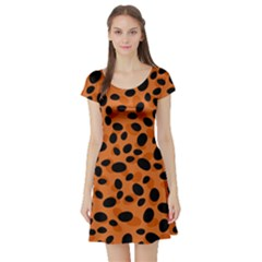 Orange Cheetah Animal Print Short Sleeve Skater Dress by mccallacoulture
