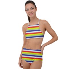 Stripey 2 High Waist Tankini Set by anthromahe