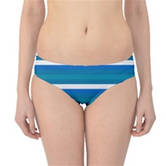 Stripey 3 Hipster Bikini Bottoms by anthromahe