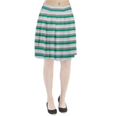 Stripey 4 Pleated Skirt by anthromahe