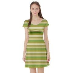 Stripey 11 Short Sleeve Skater Dress