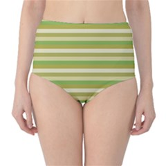 Stripey 11 Classic High-waist Bikini Bottoms by anthromahe