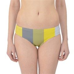 Stripey 21 Hipster Bikini Bottoms by anthromahe