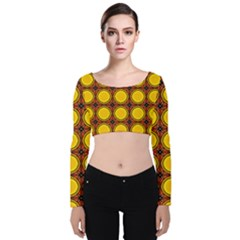 Clivius Velvet Long Sleeve Crop Top by deformigo