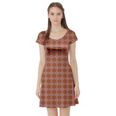 Persia Short Sleeve Skater Dress