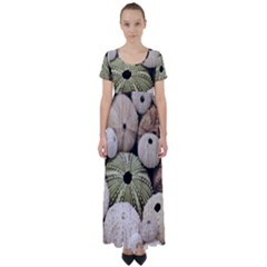 Sea Urchins High Waist Short Sleeve Maxi Dress