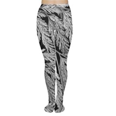 Fern Leaves Foliage Black And White Tights by Vaneshart