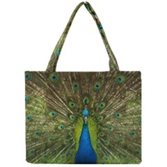 Peacock Feathers Bird Nature Mini Tote Bag
