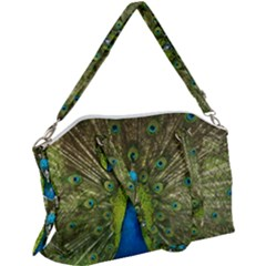 Peacock Feathers Bird Nature Canvas Crossbody Bag