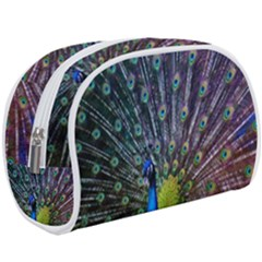 Peacock Colors Bird Colorful Makeup Case (large)